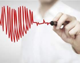 7 Правил здорового сердца фото