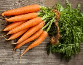 Блюда из моркови фото