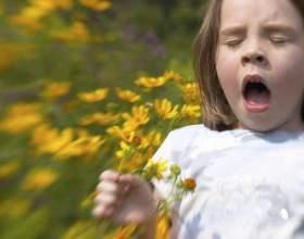 Чем отличается аллергия от диатеза фото