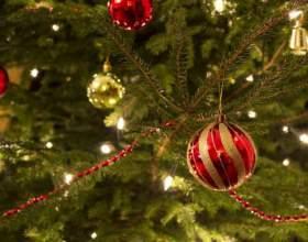 Что делать, чтобы новогодняя ёлка не осыпалась раньше срока фото