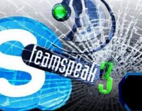 Что лучше skype или teamspeak фото