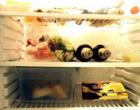 Что нельзя хранить в холодильнике фото