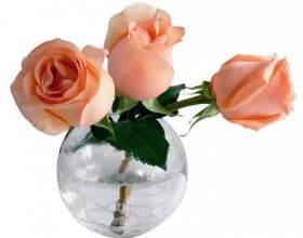 Что нужно, чтобы розы дольше стояли в вазе фото