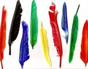 Что означает татуировка перо с птицами фото