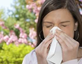 Что такое аллергия, чем она опасна фото