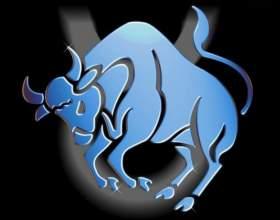 Гороскоп совместимости: какие знаки зодиака подходят тельцам фото