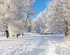К чему снится снег фото