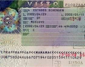 Как читать шенгенскую визу фото