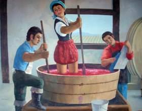 Как делать домашнее вино из винограда фото