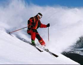 Как держать лыжные палки фото