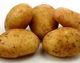 Как добыть огонь с помощью картофеля фото