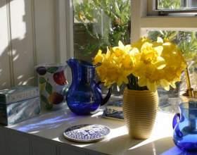Как дольше сохранить цветы в вазе фото