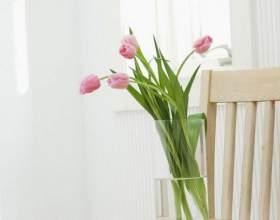 Как дольше сохранить срезанные тюльпаны в вазе фото