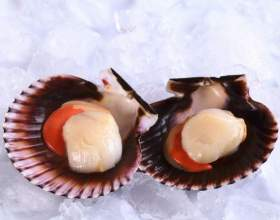 Как готовить морские гребешки фото