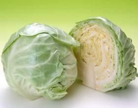 Как готовить салаты из капусты на зиму фото
