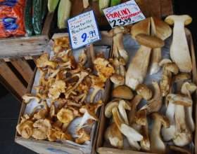 Как готовить сушеные белые грибы фото