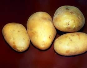 Как хранить очищенный картофель фото