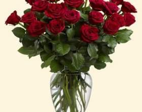 Как хранить розы в вазе фото