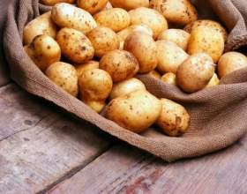 Как и сколько хранить картофель фото