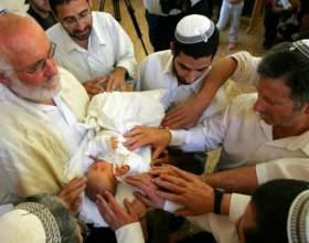 Как и зачем евреям делают обрезание фото