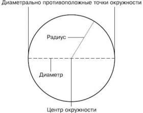 Как измерить окружность фото