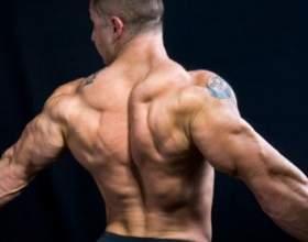 Как качать широчайшие мышцы фото