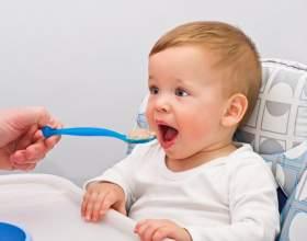 Как кормить ребенка в 8 месяцев фото