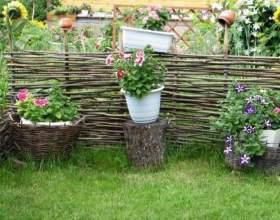 Как красиво украсить участок на даче летом фото