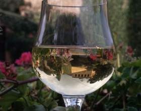 Как купить хорошее вино фото