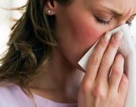 Как лечить аллергию на животных фото