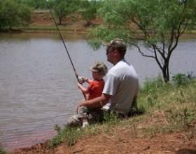 Как ловить карася фото