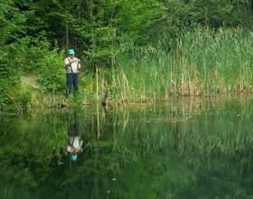 Как ловить окуня на спиннинг фото