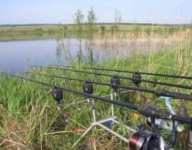 Как ловить рыбу на живца фото