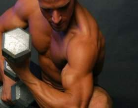 Как лучше всего накачать мышцы фото