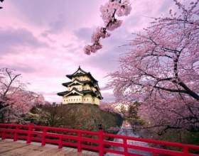 Как можно выучить японский фото