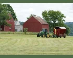 Как начать фермерское хозяйство фото
