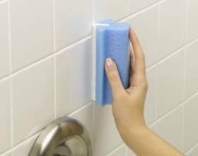 Как надолго избавиться от плесени в ванной комнате фото