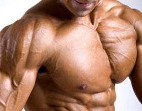 Как накачать грудные мышцы в зале фото