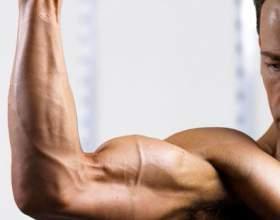 Как накачать мышцы груди и рук фото