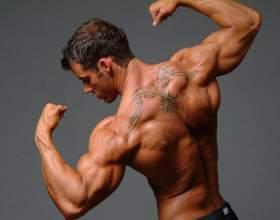 Как накачать мышцы груди, плеч, пресса в домашних условиях фото