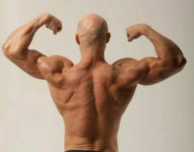 Как накачать мышцы: программа фото