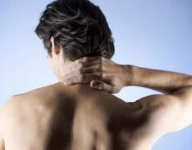 Как накачать мышцы спины фото