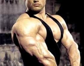 Как накачать мышцы за год фото