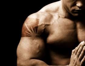 Как накачать нижние грудные мышцы фото