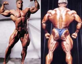 Как накачать все мышцы тела фото