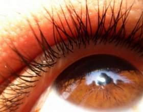 Как нанести тени для карих глаз фото