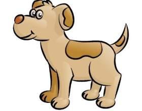 Как нарисовать красиво щенка фото