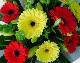 Как научиться составлять букеты из цветов фото