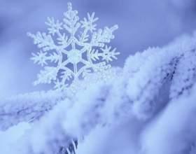 Как необычно отметить день рождения зимой фото