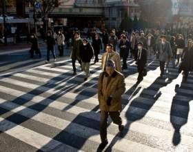 Как нужно переходить дорогу фото